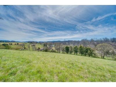 Washington-Tn County Residential Lots & Land For Sale: 354 Mt Wesley Rd