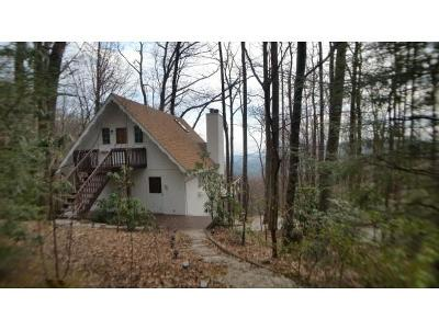 Little Switzerland NC Single Family Home For Sale: $189,000