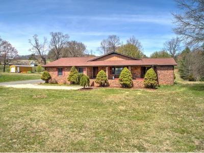 Bristol VA Single Family Home For Sale: $244,900