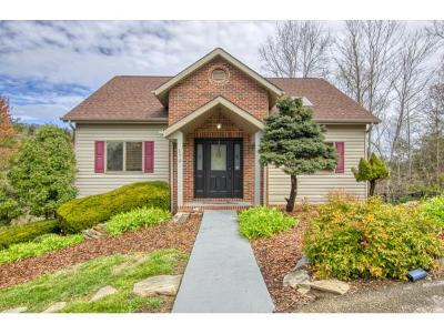 Kingsport Single Family Home For Sale: 170 Aston Court