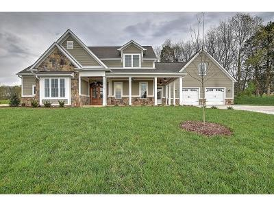 Blountville Single Family Home For Sale: 105 Harbor View Drive