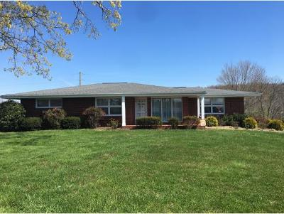 Greeneville Single Family Home For Sale: 115 College View Dr.