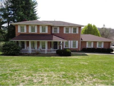 Bristol Single Family Home For Sale: 298 Shipley Drive