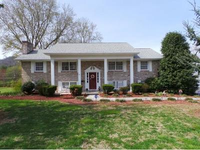 Rogesville, Rogersvillle, Rogersville Single Family Home For Sale: 709 E McKinney Avenue