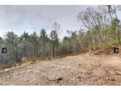 Butler Residential Lots & Land For Sale: TBD Canaan Road