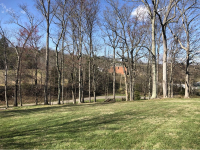 Greene County Residential Lots & Land For Sale: 65 Sunnyview Rd