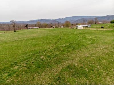 Greene County Residential Lots & Land For Sale: Greene Ridge Loop