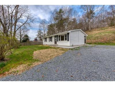 Bristol VA Single Family Home For Sale: $99,699