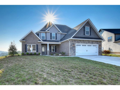 Kingsport Single Family Home For Sale: 3325 Murrayfield Way