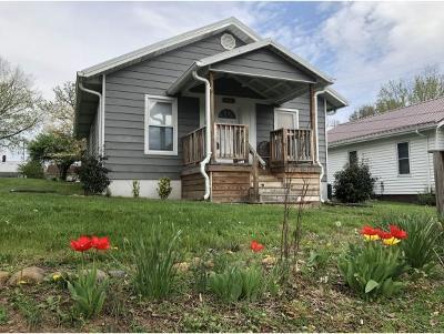 Johnson City Single Family Home For Sale: 1311 E Millard