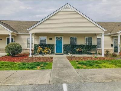 Kingsport Condo/Townhouse For Sale: 1561 Pine Cone Circle