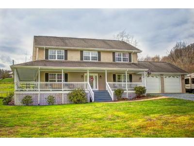 Elizabethton Single Family Home For Sale: 2523 Bob Little Road