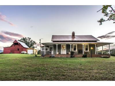 Greeneville Single Family Home For Sale: 750 Nolichuckey Road