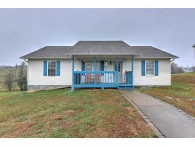 Greeneville Single Family Home For Sale: 190 Carriage