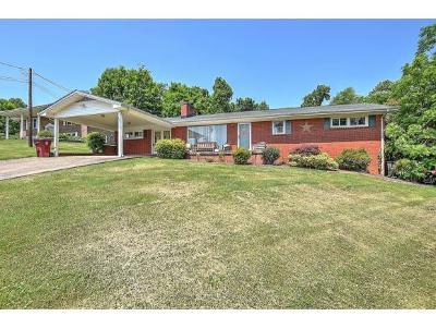Johnson City, Watauga, Johmson City, Johnosn City, Johnsn City, Johnson, Johnson Ciity, Johnson Citry, Johnson Ctiy Single Family Home For Sale: 1003 Ridgefield Circle