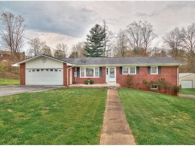 Johnson City TN Single Family Home For Sale: $182,500