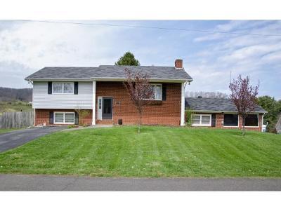 Bristol VA Single Family Home For Sale: $174,900