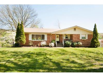 Johnson City Single Family Home For Sale: 2209 N. Greenwood Drive