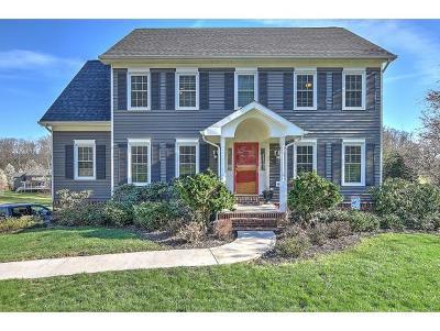Kingsport Single Family Home For Sale: 443 Pettyjohn Rd