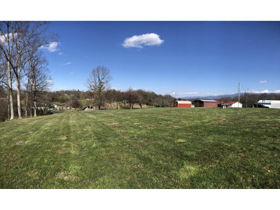 Greene County Residential Lots & Land For Sale: TBD Sunnyview Rd