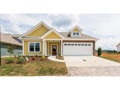 Kingsport Single Family Home For Sale: 1723 Ethans Ct.
