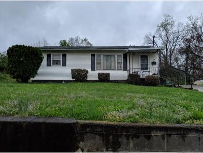 Greeneville Single Family Home For Sale: 338 Davis St