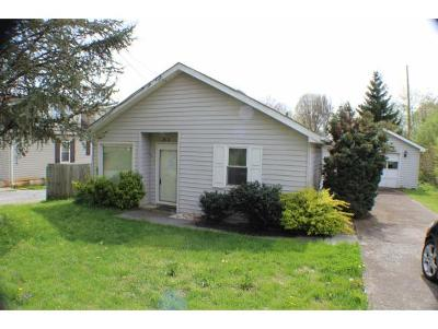 Kingsport Single Family Home For Sale: 312 Arbutus Ave.