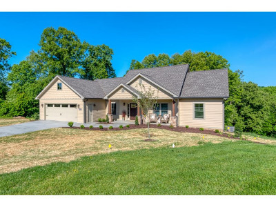 Bristol Single Family Home For Sale: 217 Oak View Circle