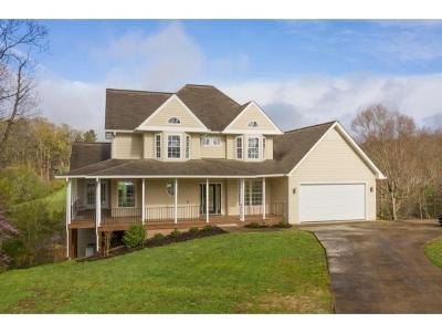 Piney Flats Single Family Home For Sale: 210 Charlie Avenue