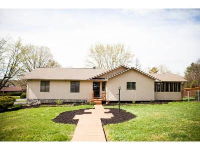 Johnson City Single Family Home For Sale: 3009 Newbern Drive
