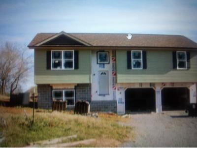 Kingsport Single Family Home For Sale: 1461 Highridge Drive