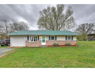 Elizabethton Single Family Home For Sale: 230 Apple Tree Lane