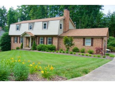 Kingsport Single Family Home For Sale: 2104 Southcote Dr