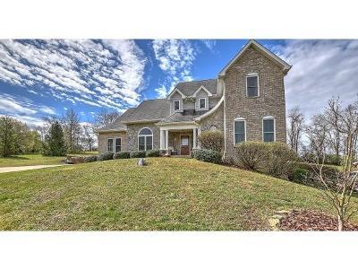Bristol VA Single Family Home For Sale: $439,900