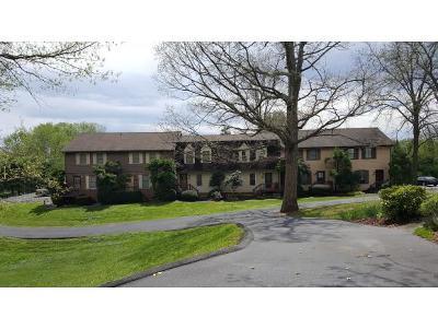 Johnson City Condo/Townhouse For Sale: 2203 Greenbriar #1