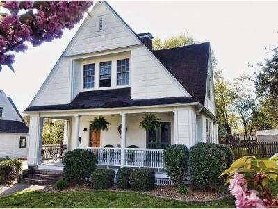 Kingsport Single Family Home For Sale: 905 Norwood Street