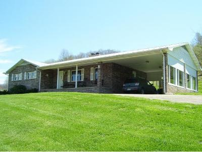 Abingdon Single Family Home For Sale: 19292 Rich Valley Road