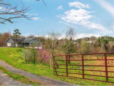 Rogersvillle, Rogesville, Rogersville Single Family Home For Sale: 456 Hwy 70 S
