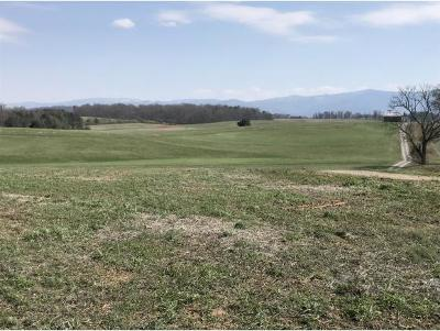 Greene County Residential Lots & Land For Sale: Massengill Way
