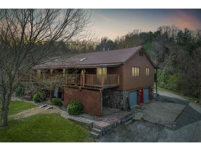 Greene County Single Family Home For Sale: 3595 Doty Chapel Rd