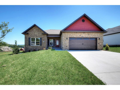 Kingsport Single Family Home For Sale: 3309 Murrayfield Way