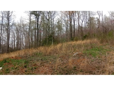 Bristol Residential Lots & Land For Sale: 292 Peters Rd.