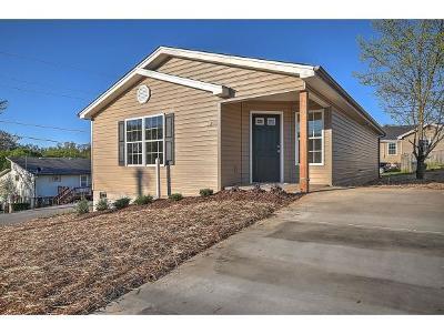 Kingsport Single Family Home For Sale: 2211 Glenwood St