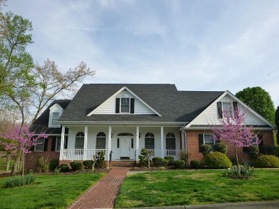 Kingsport Single Family Home For Sale: 141 Chippendale Square