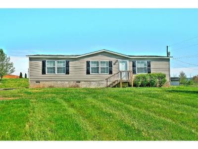 Hawkins County Single Family Home For Sale: 2872 Main Street