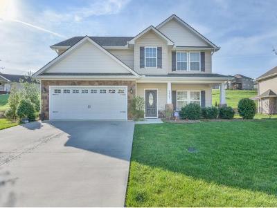 Kingsport Single Family Home For Sale: 2907 Royal Mile Divide