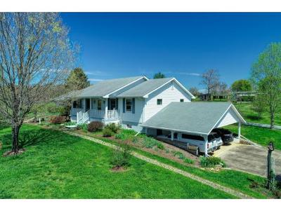 Single Family Home For Sale: 2120 Bright Hope Road