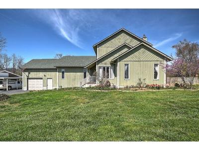 Kingsport Single Family Home For Sale: 1808 Idle Hour Rd