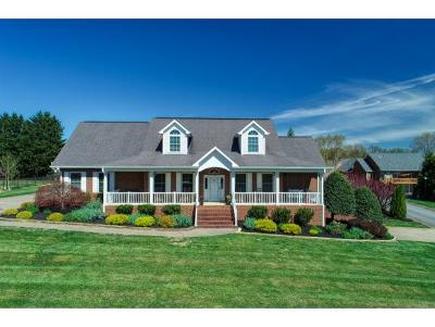 Greeneville Single Family Home For Sale: 14 West Ridgefield Court