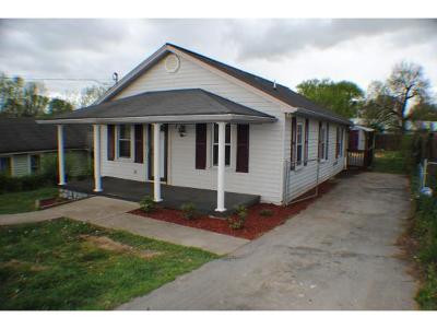 Kingsport Single Family Home For Sale: 120 Alvin